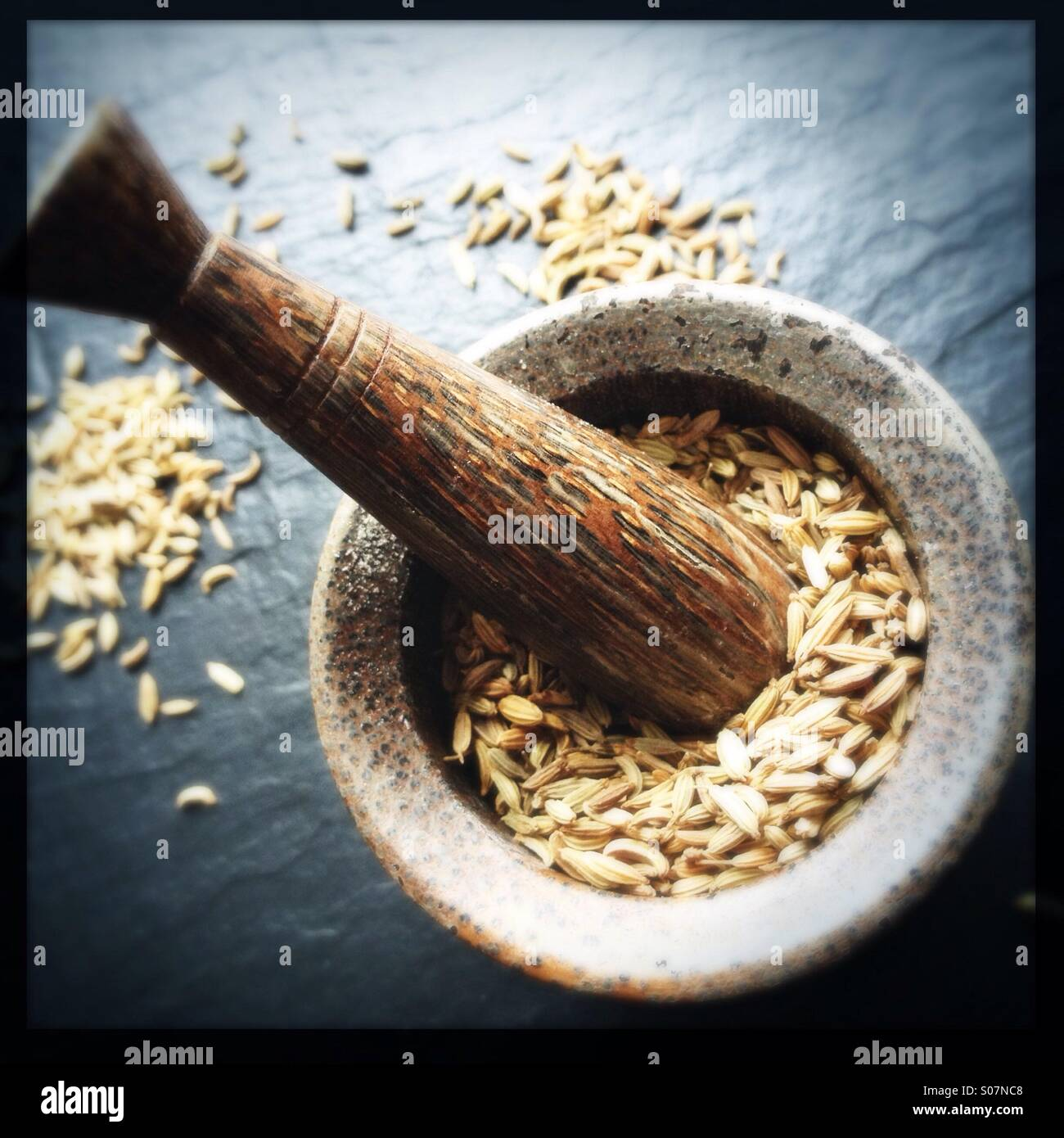 fennel-seeds-in-mortar-and-pestle-S07NC8