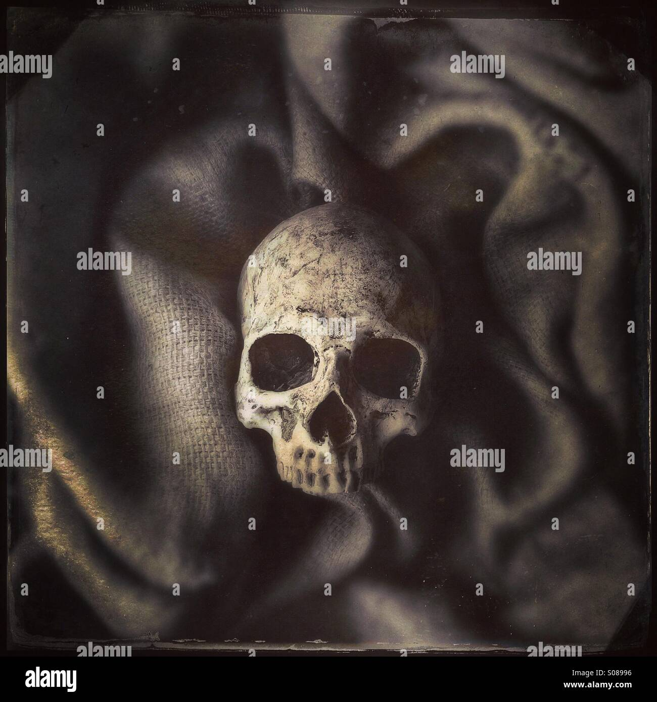 Human skull surrounded by burlap - Stock Image