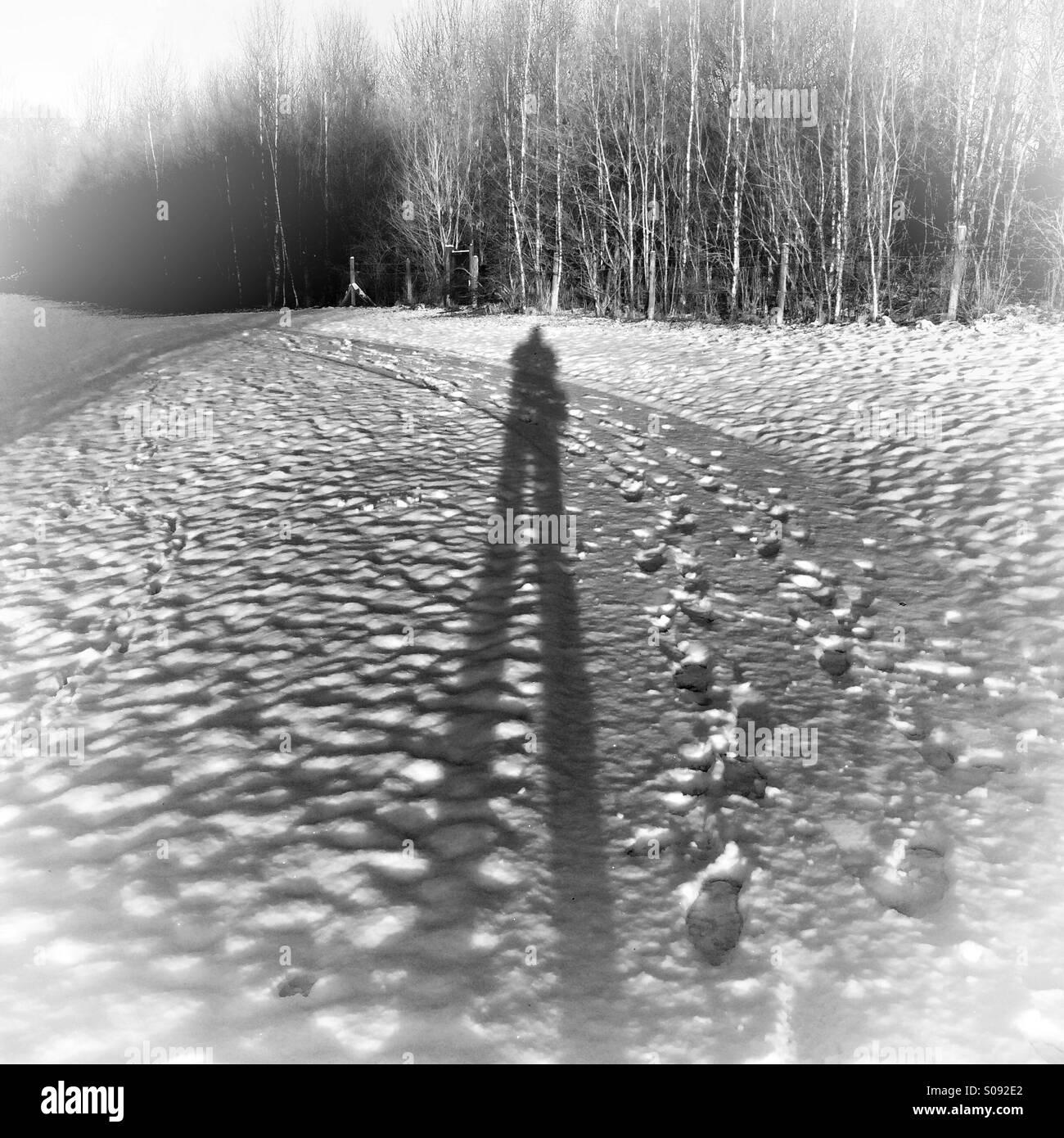 Long Shadow - Stock Image
