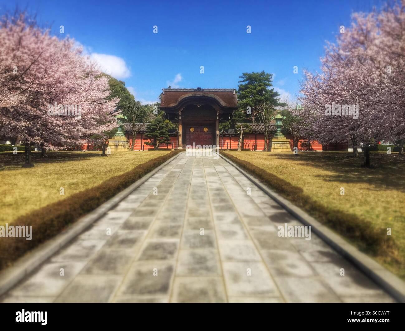 Karamon or traditional gate at Soji-ji, a Buddhist temple in Tsurumi Ward, Yokohama City, Japan, with sakura or - Stock Image
