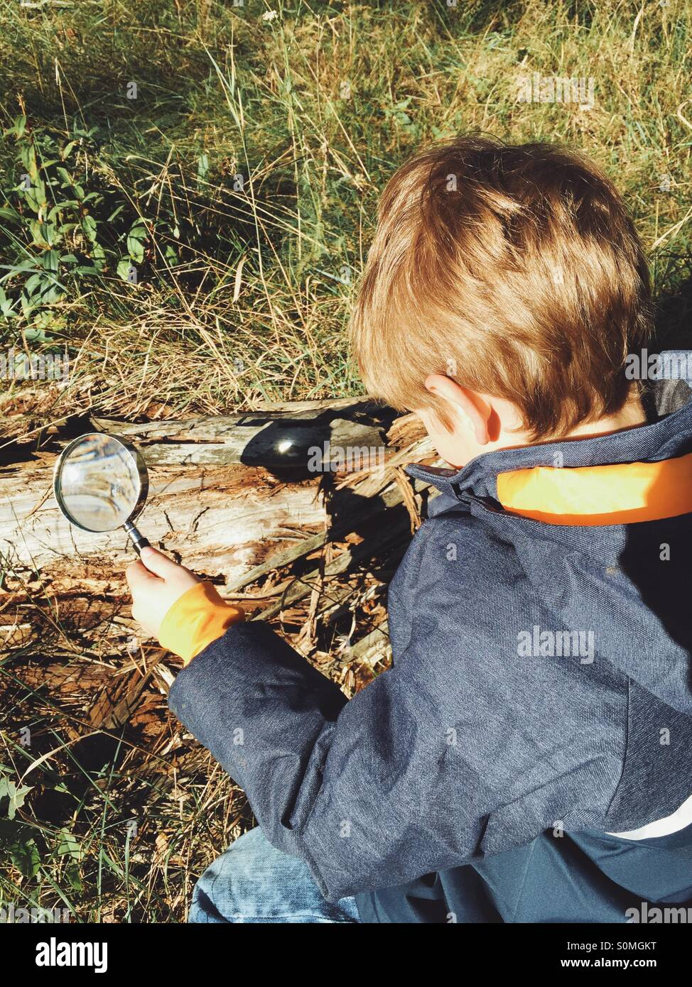 Five year old boy burning wood with a loupe - Stock Image