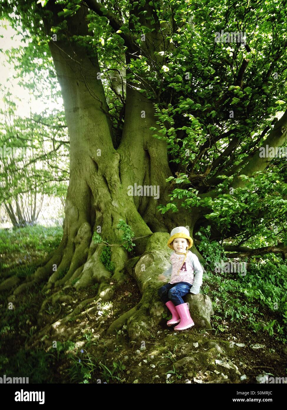 Little girl by large tree - Stock Image
