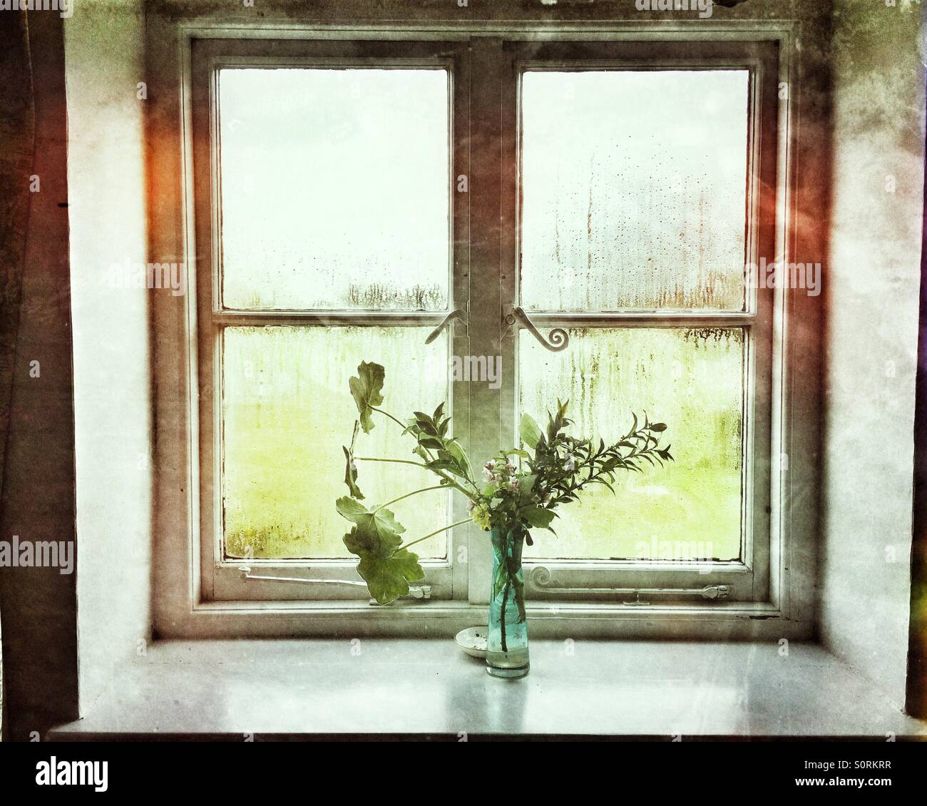 A vase of flowers at a window Stock Photo