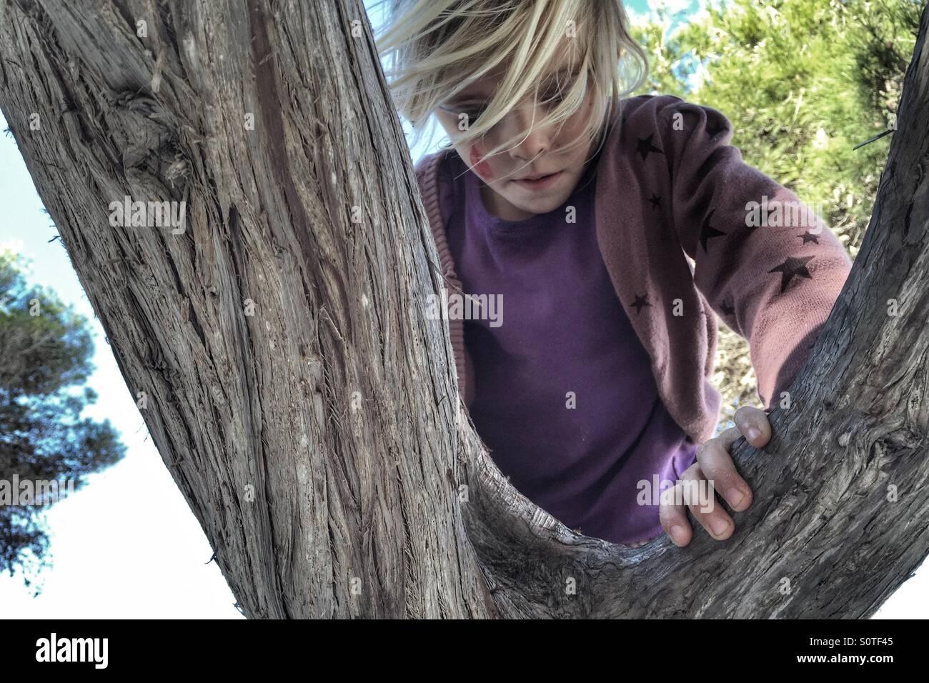 Girl climbing a tree - Stock Image