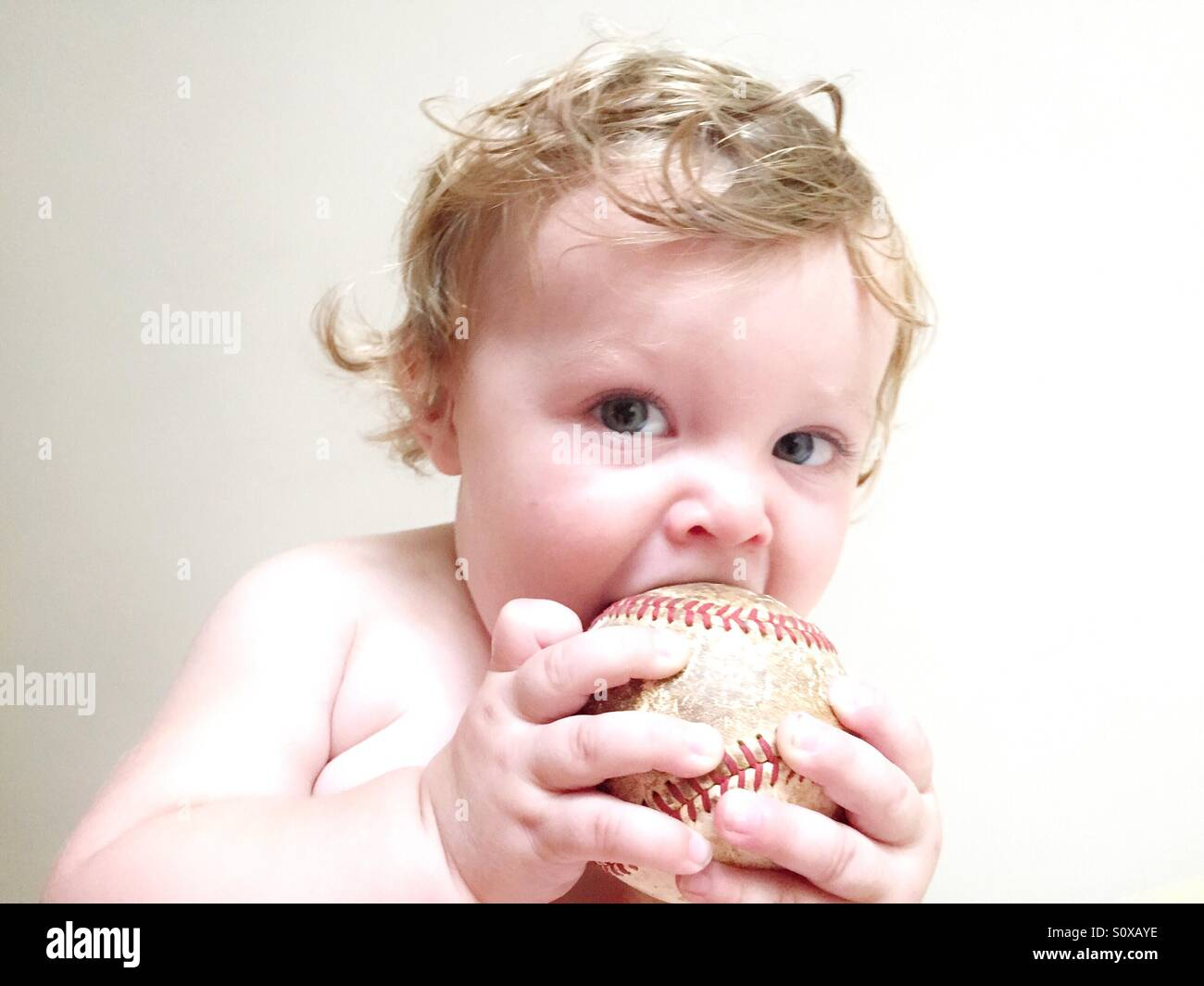 High key image of a baby boy chewing on an old baseball - Stock Image