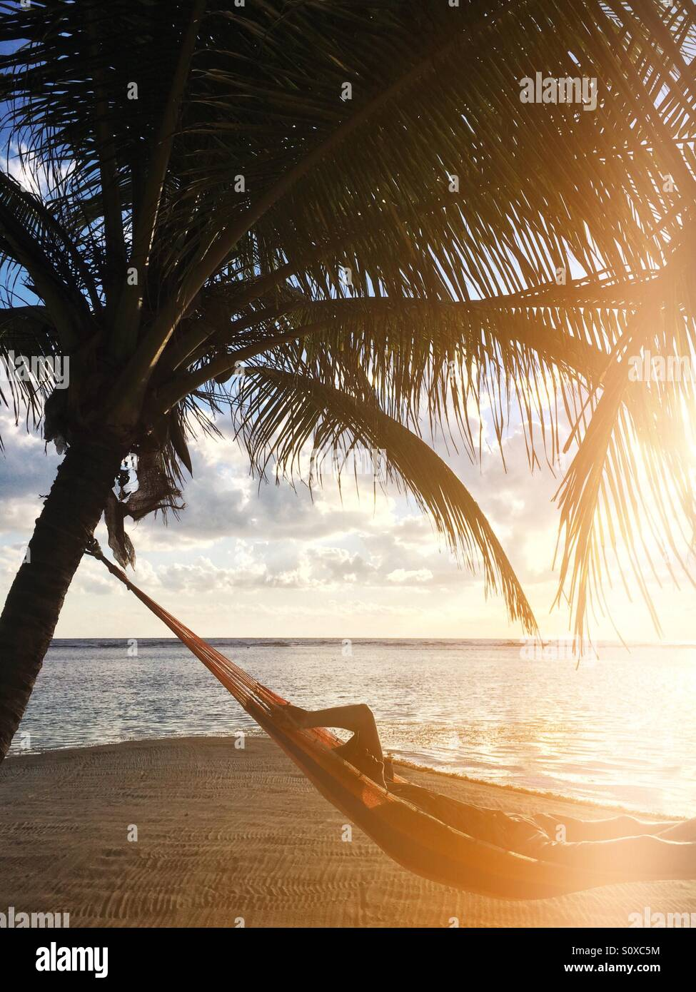 Man in a hammock, South Water Caye , Belize - Stock Image