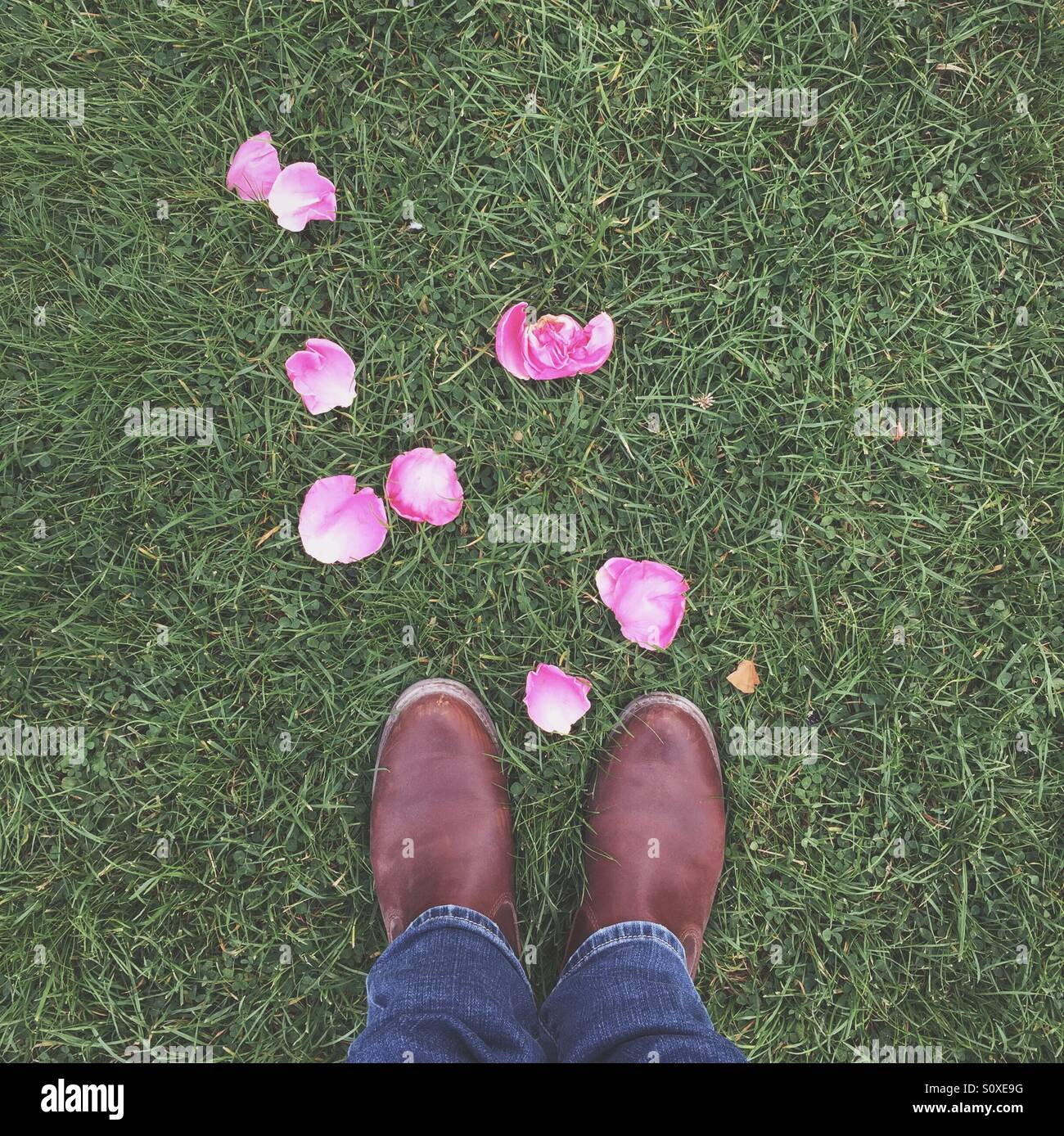 Lady with rose petals - Stock Image