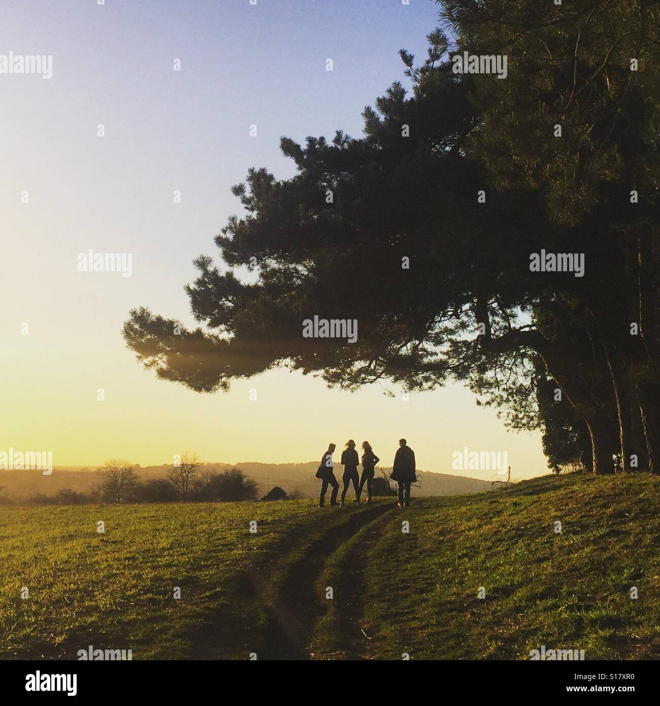 Golden hour walk Stock Photo