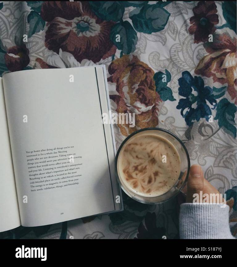 A book and hot chocolate is the best mixture☕️📔 Stock Photo
