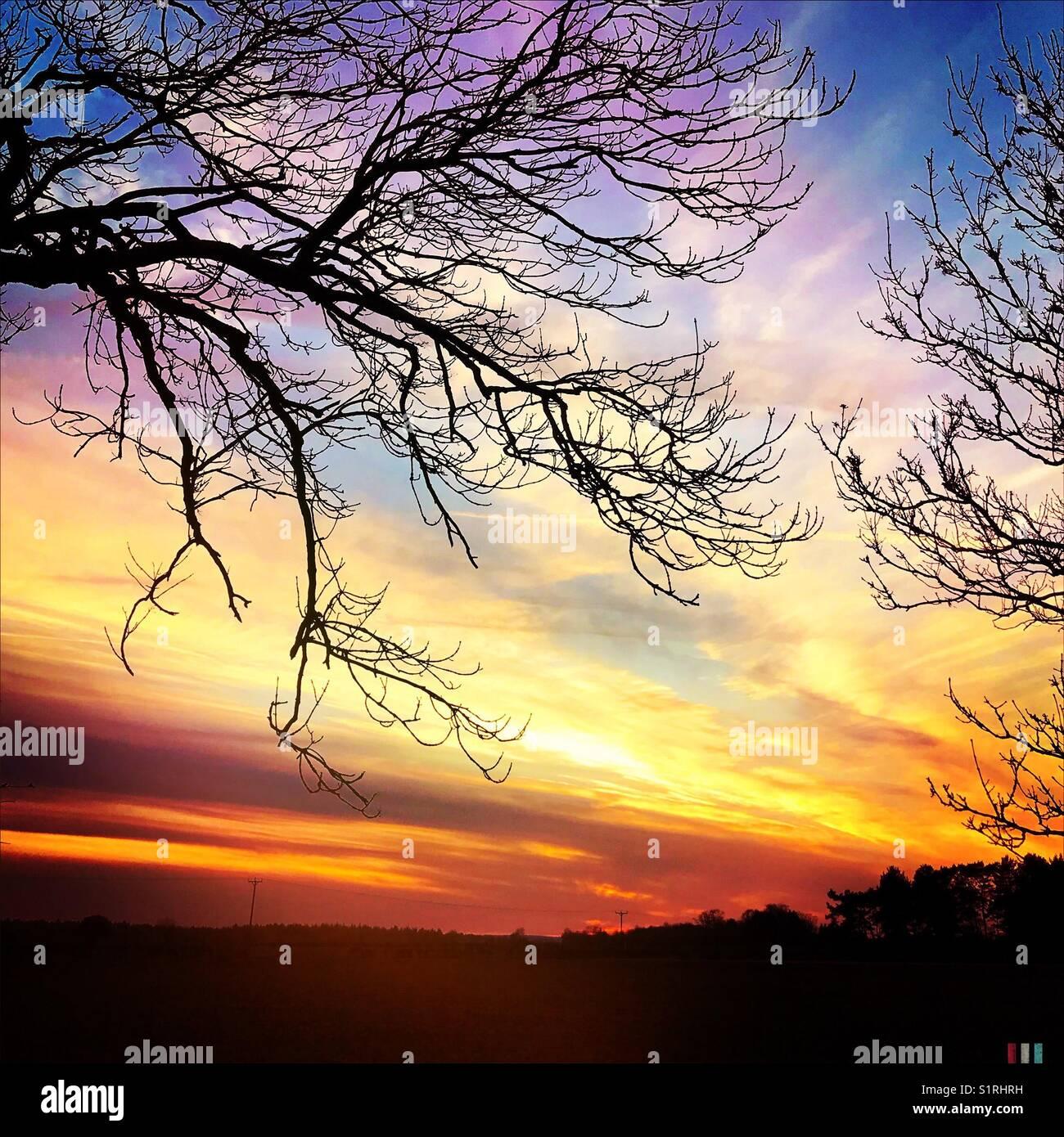 Autumnal Sunset - Stock Image