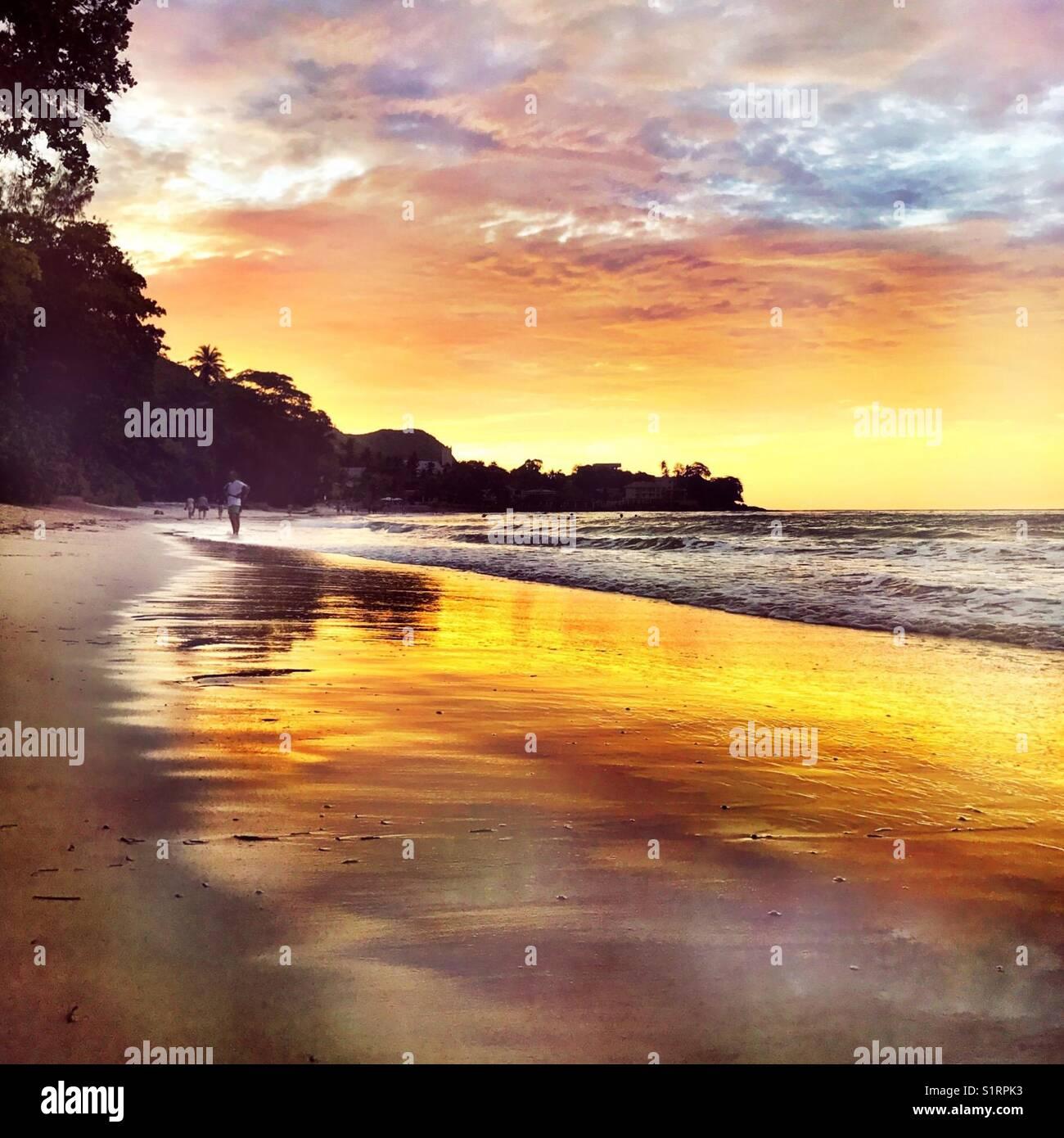 Tropical beach Seychelles - Stock Image