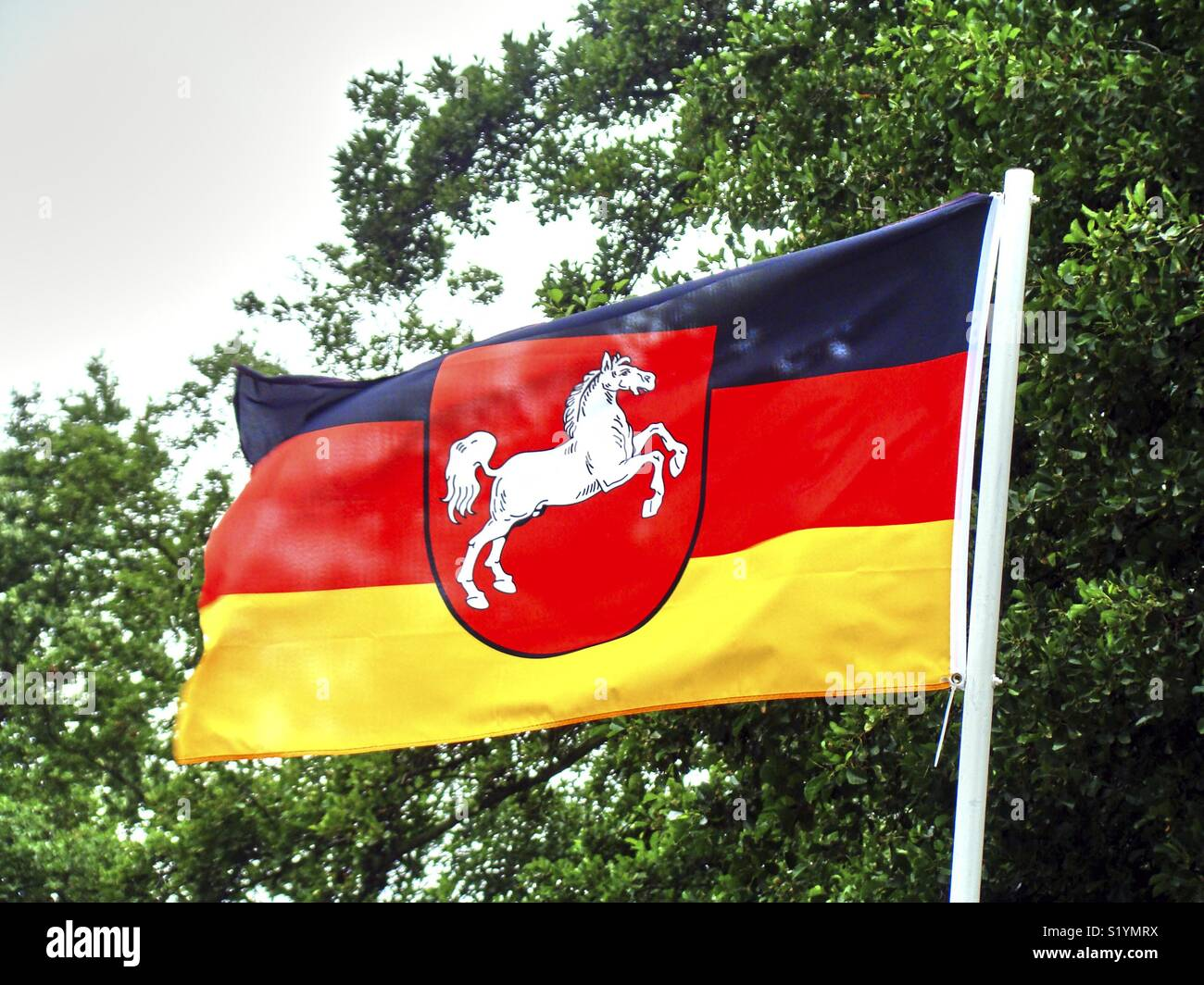 Country Flag Of Lower Saxony A State Of Germany Blow In The Wind
