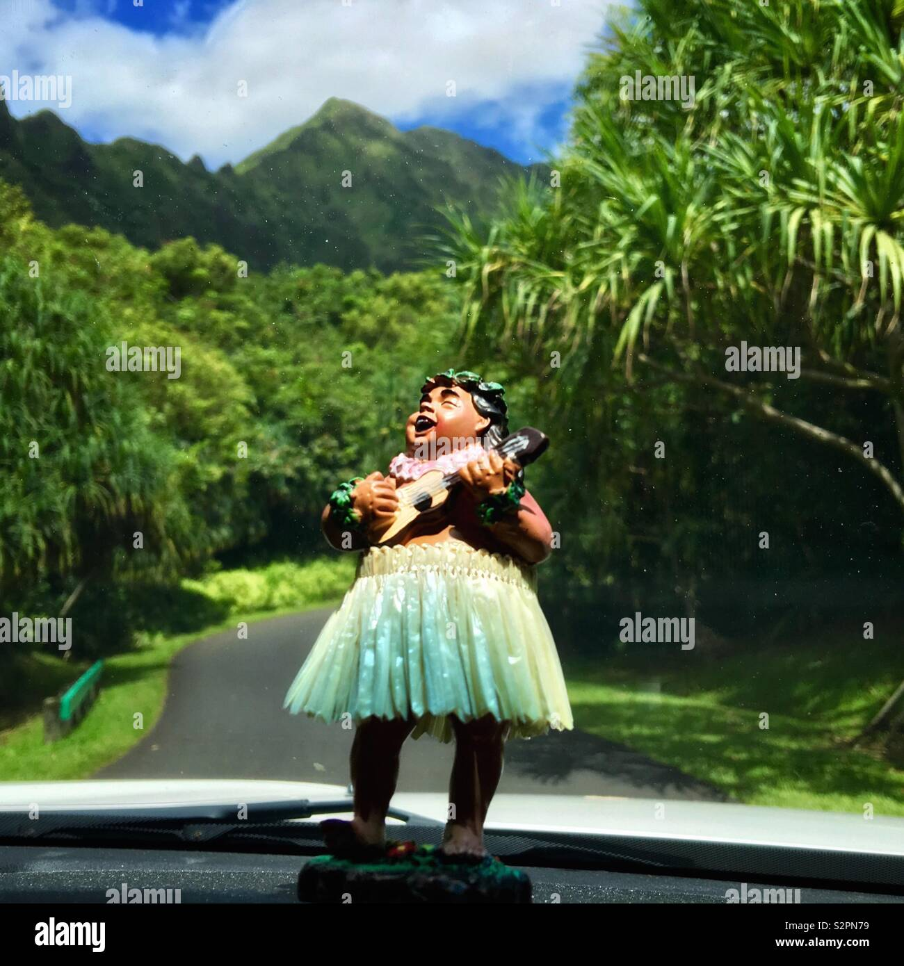 hula-bobblehead-in-a-grass-skirt-playing