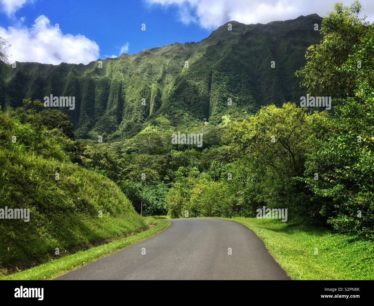 driving-down-a-road-in-kaneohe-hawaii-on
