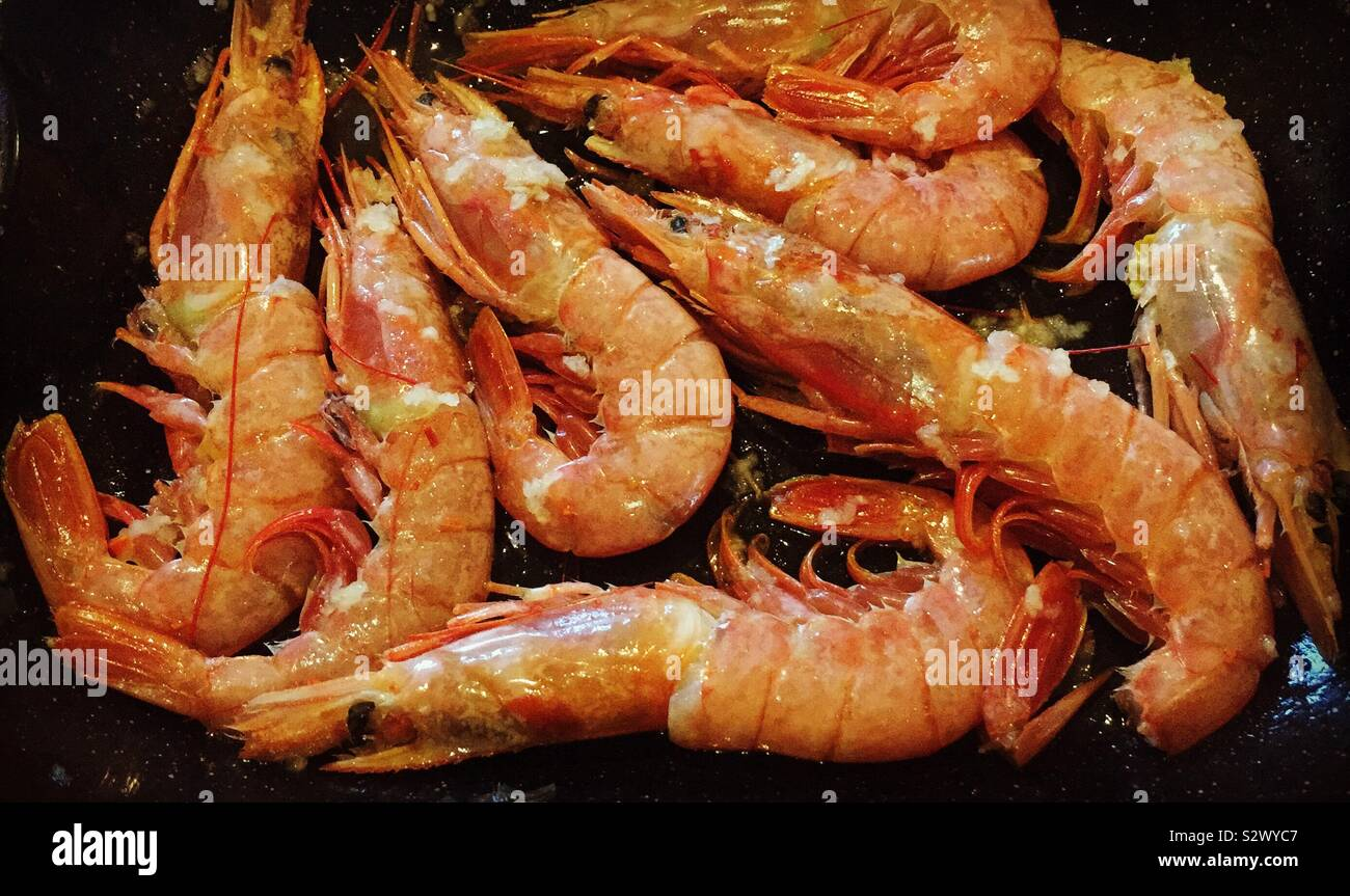 argentinian-red-shrimp-ready-to-cook-S2W