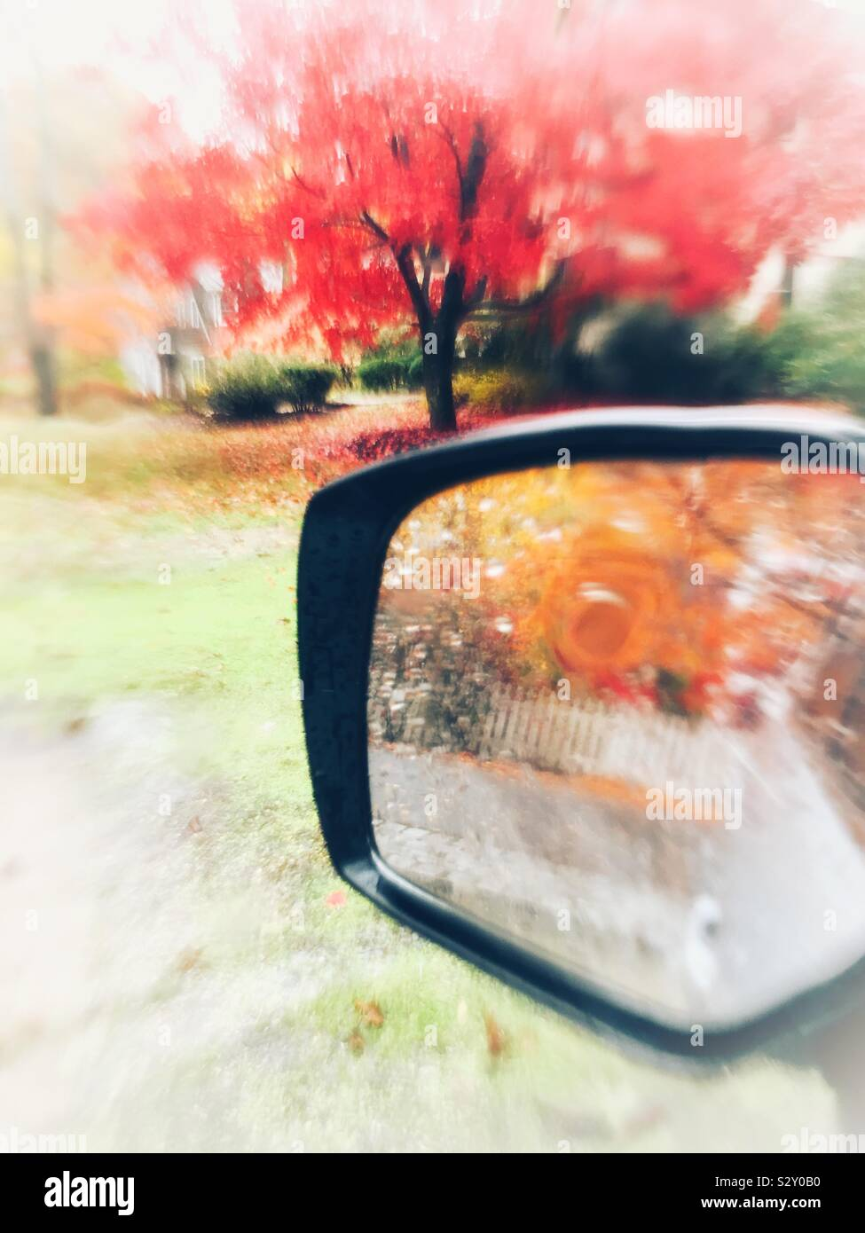Rainy day autumnal abstract red Japanese maple tree Acer palmatum and orange fall leaves reflections in car mirror autumn vertical abstract mobile background with copy space. Stock Photo