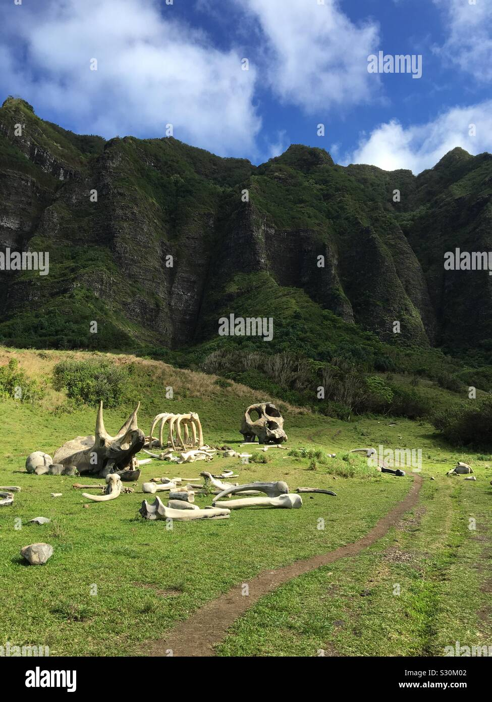 king-kong-movie-location-for-kong-skull-