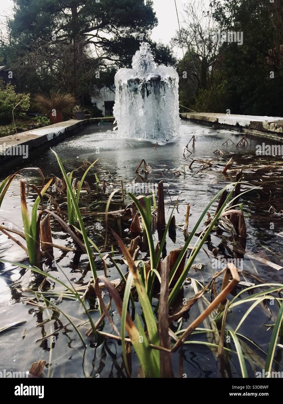 frozen-garden-pond-and-fountain-S3DBWF.j