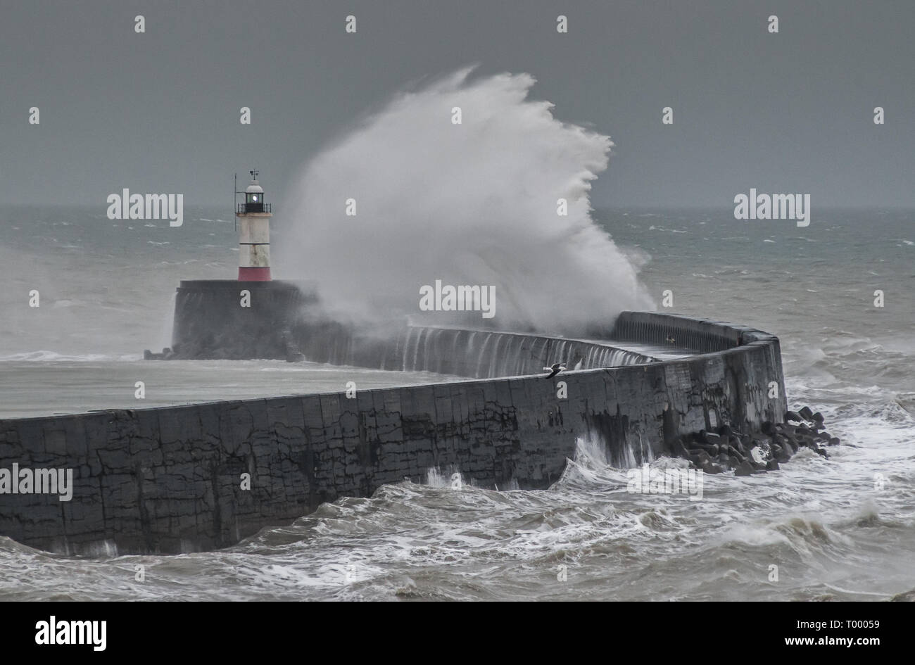 Newhaven, East Sussex, UK..16 March 2019..Strong South Westerley winds return to the Channel coast creating some dramatic scenes...David Burr/Alamy Live News Stock Photo