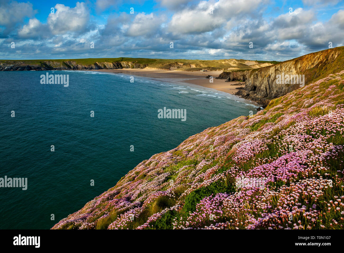 Holywell Bay; Cornwall; UK Stock Photo