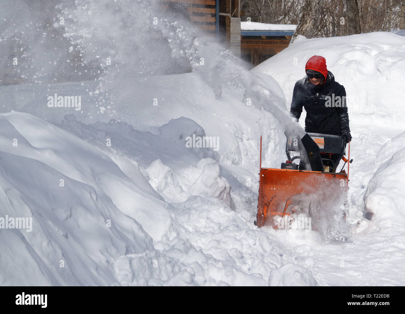 a-woman-using-a-snow-blower-to-clear-snow-from-her-garden-in-quebec-winter-2018-2019-saw-very-heavy-snowfall-T22EDB.jpg