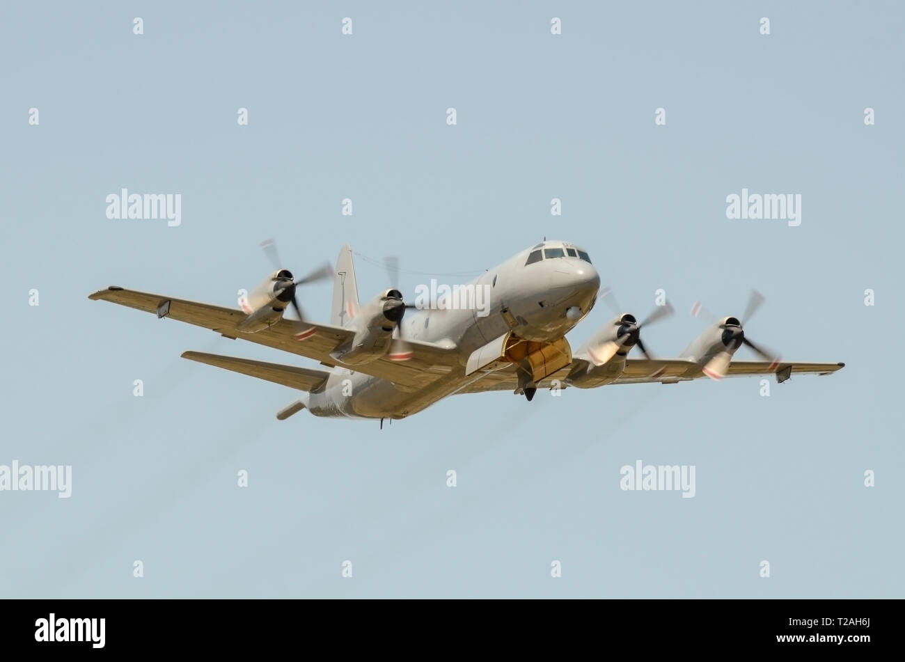 royal-new-zealand-air-force-lockheed-p-3-orion-plane-upgraded-by-l-3-communications-canada-and-now-designated-as-p-3k2-maritime-patrol-aircraft-5sqn-T2AH6J.jpg