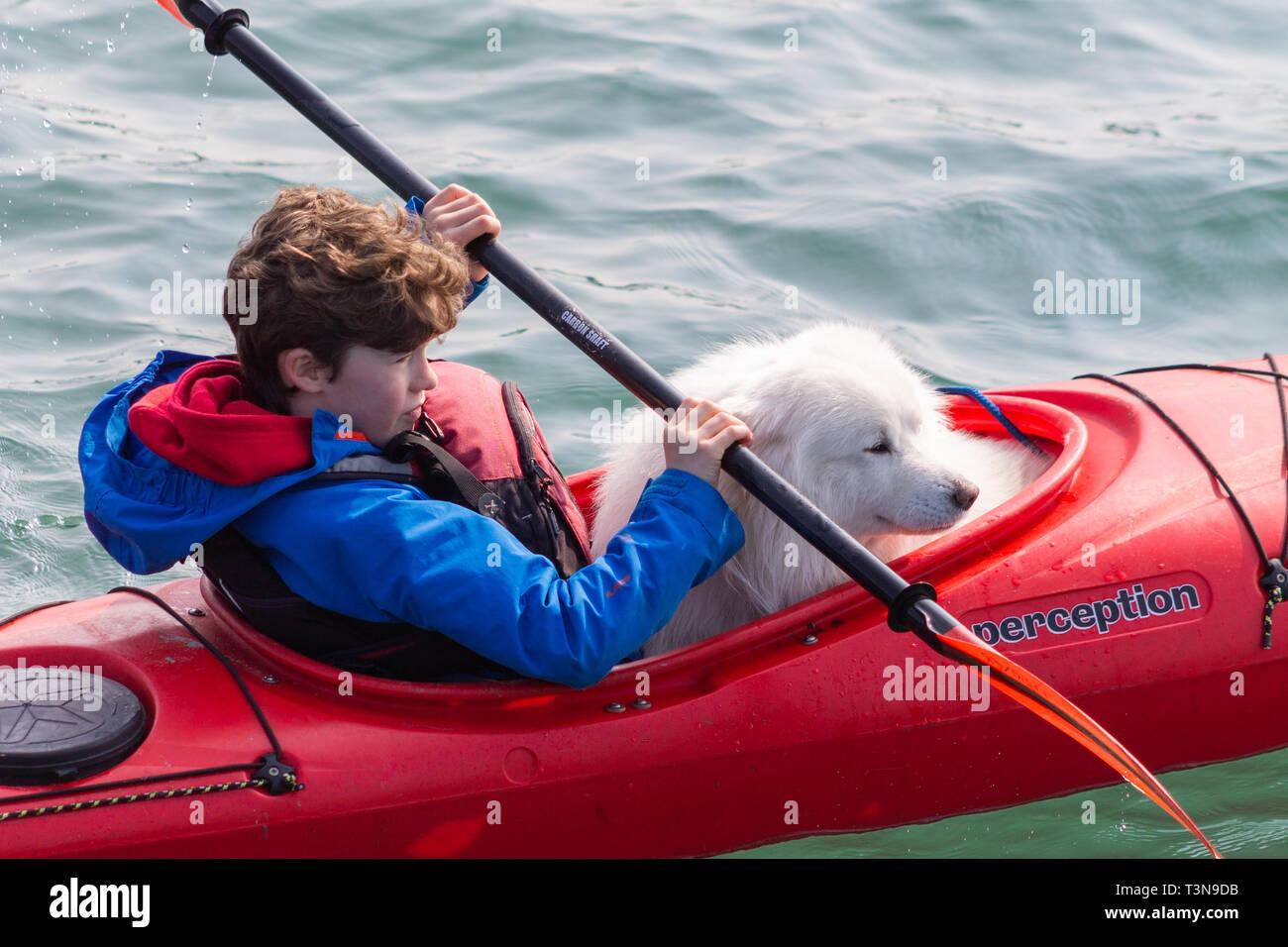 boy-and-his-pet-dog-kayaking-or-canoeing-T3N9DB.jpg