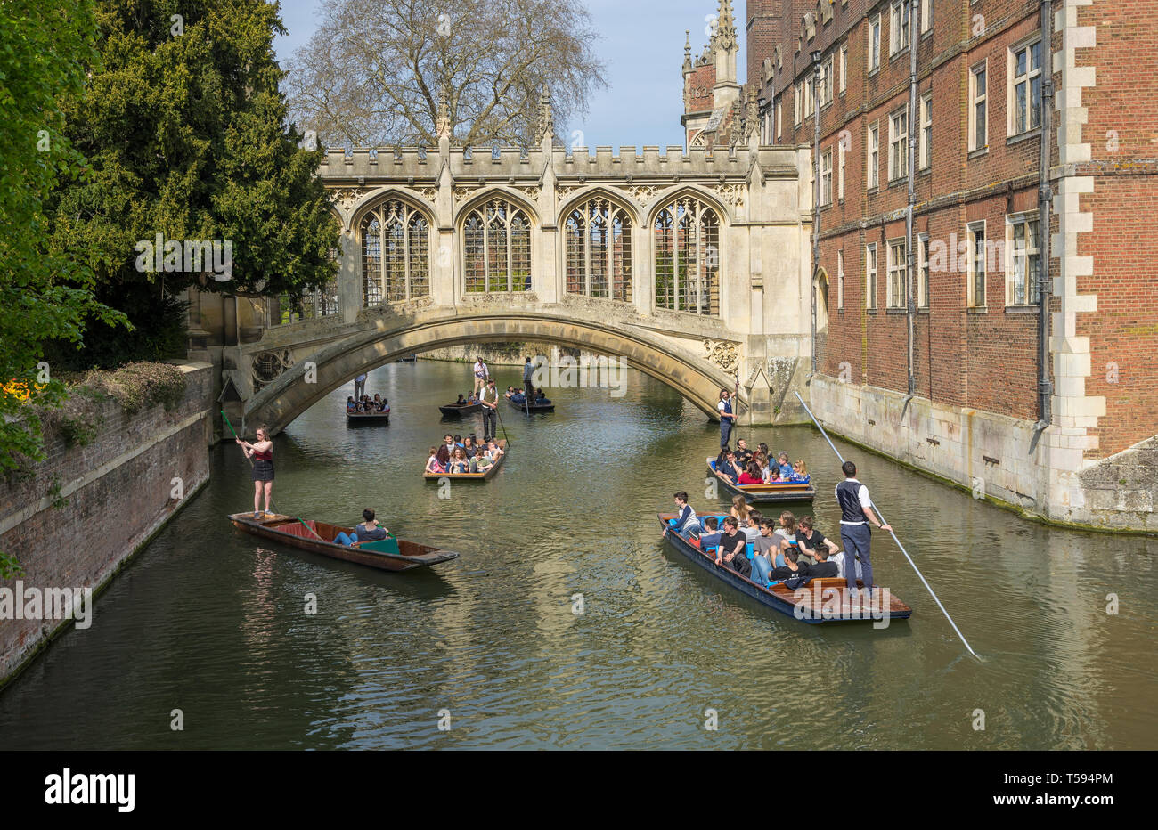 heavy-traffic-of-punts-at-bridge-of-sighs-st-johns-college-cambridge-2019-T594PM.jpg