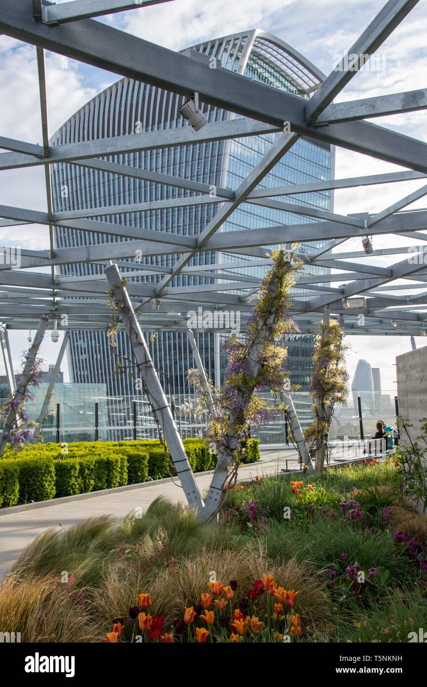 view-of-london-sky-garden-otherwise-called-as-walkie-talkie-building-from-fen-court-rooftop-building-on-fenchurch-street-T5NKNH.jpg