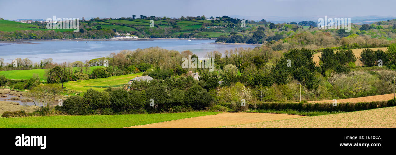 panoramic-view-of-the-river-lynher-estuary-at-low-tide-in-cornwall-uk-in-spring-2019-T610CA.jpg