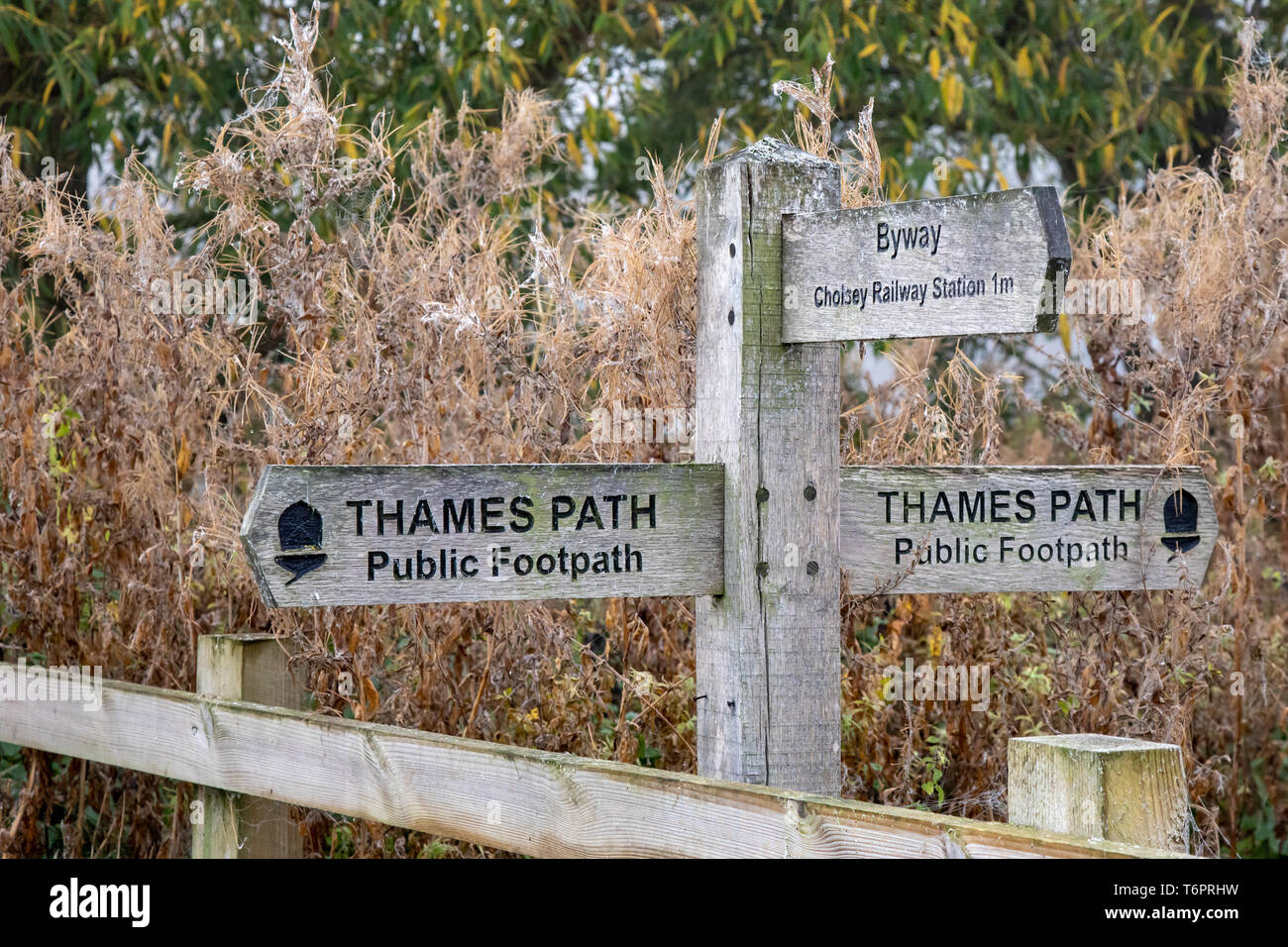 Thames Path sign, Cholsey, South Oxfordshire, England, UK Stock Photo