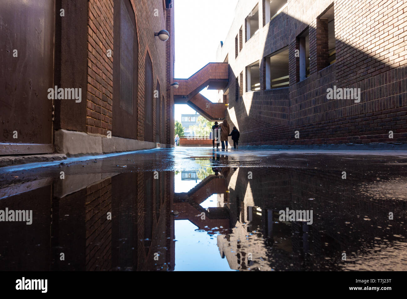 1970s-architecture-reflects-in-a-puddle-following-a-shower-T7J23T.jpg
