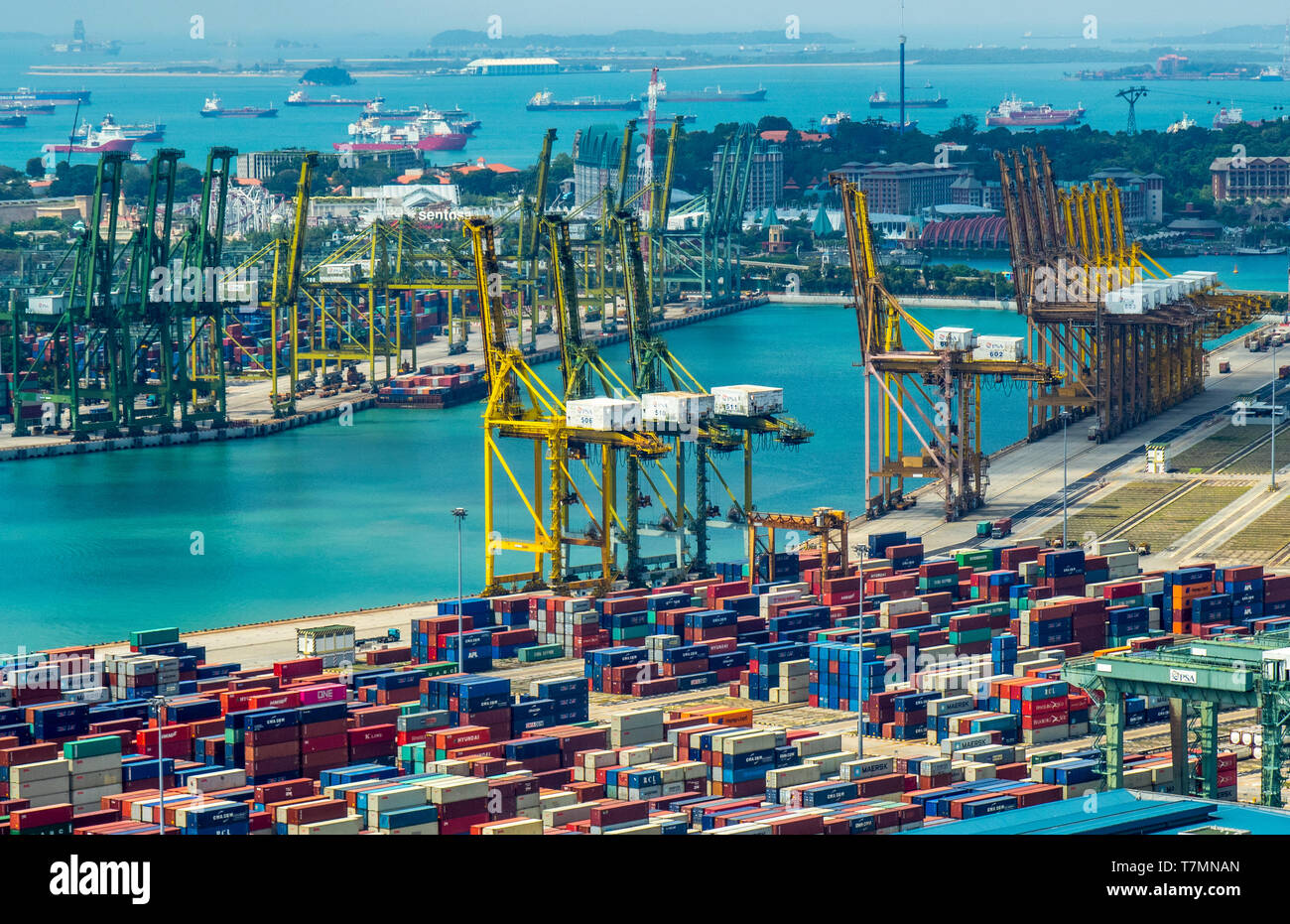cranes-and-shipping-containers-at-port-of-singapore-at-keppel-harbour-singapore-T7MNAN.jpg