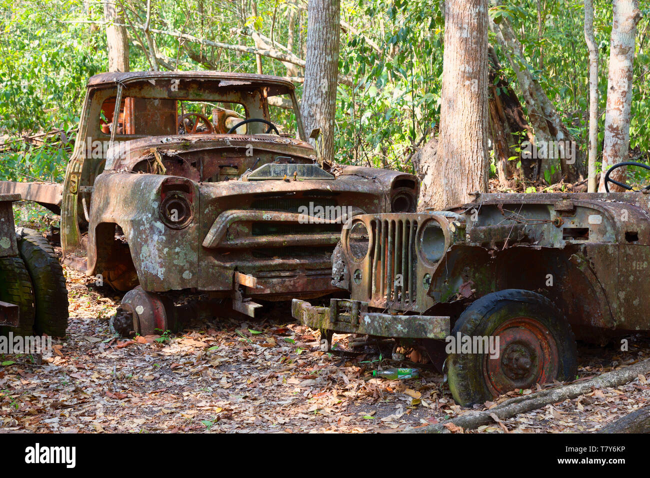 old-cars-rusting-and-dumped-in-the-forest-guatemala-central-america-concept-broken-down-pollution-T7Y6KP.jpg