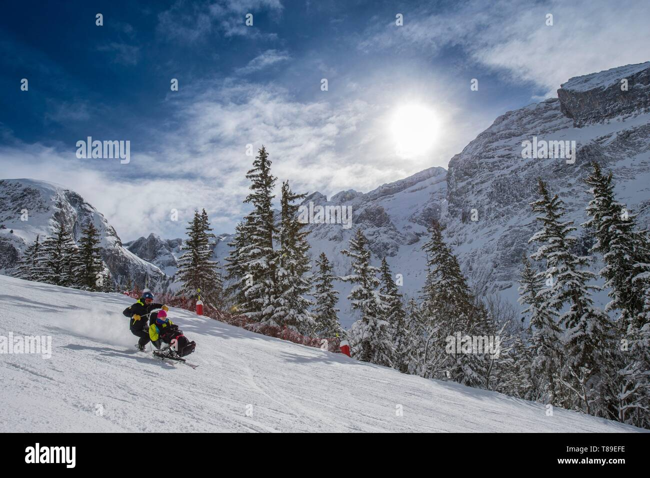 France, Savoie, Massif de la Vanoise, National Park, Pralognan La Vanoise, practice of handiskiing in tandem skiing with an instructor Stock Photo
