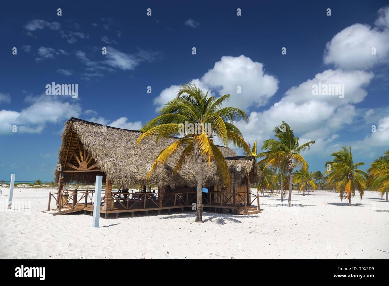 beachfront-wooden-shack-bar-and-grill-re