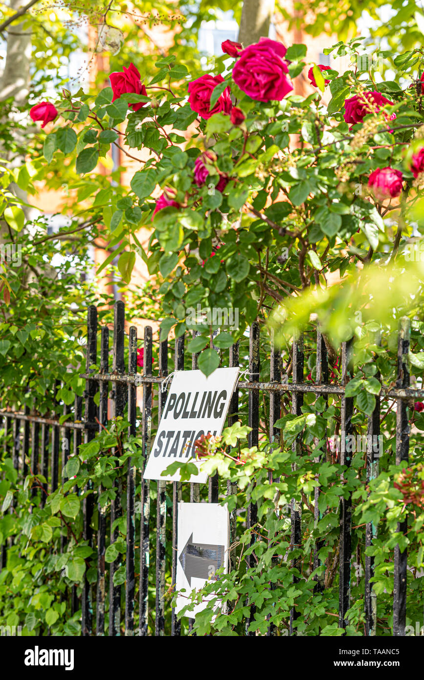 polling-station-sign-among-the-leaves-and-flowers-of-a-red-rose-bush-on-a-sunny-day-european-parliament-election-2019-voting-day-democracy-eu-TAANC5.jpg
