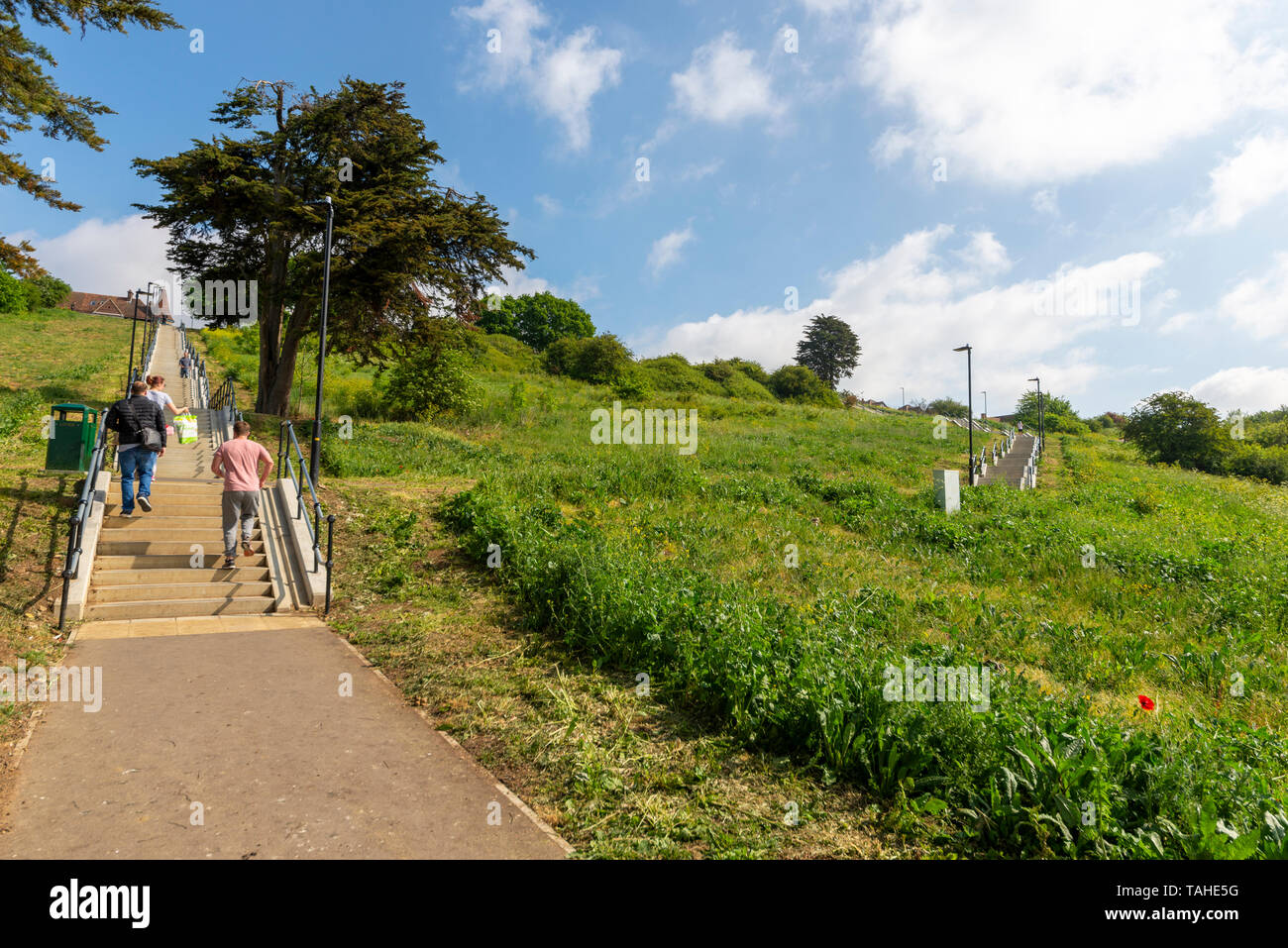 herschell-steps-gardens-and-belton-hills-nature-reserve-leigh-on-sea-essex-uk-above-the-thames-estuary-cliff-top-town-in-southend-borough-TAHE5G.jpg
