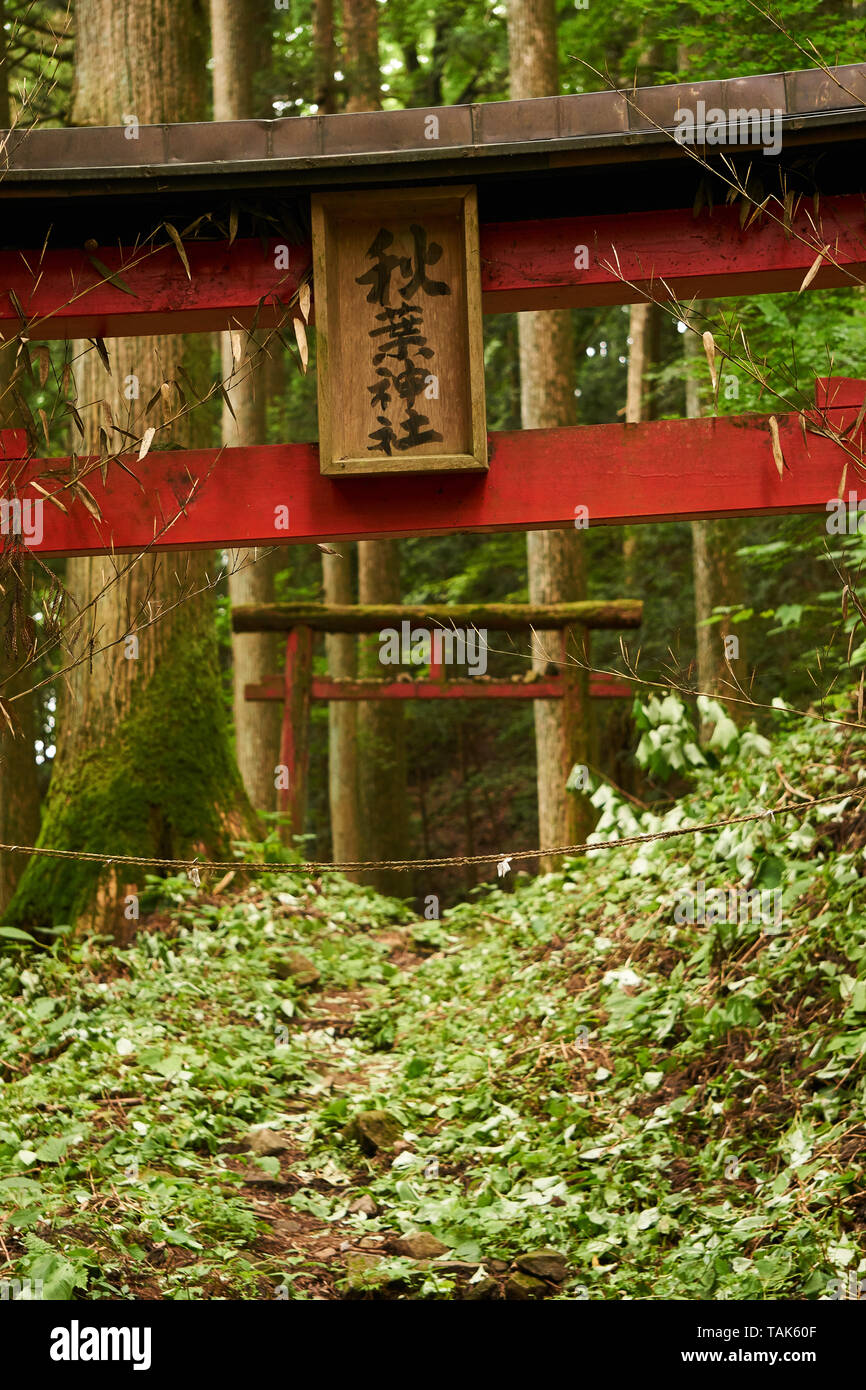 old-worn-vermilion-torii-shrine-gate-with-sign-reading-akiba-shrine-in-the-forests-of-mount-haruna-in-takasaki-gunma-japan-TAK60F.jpg