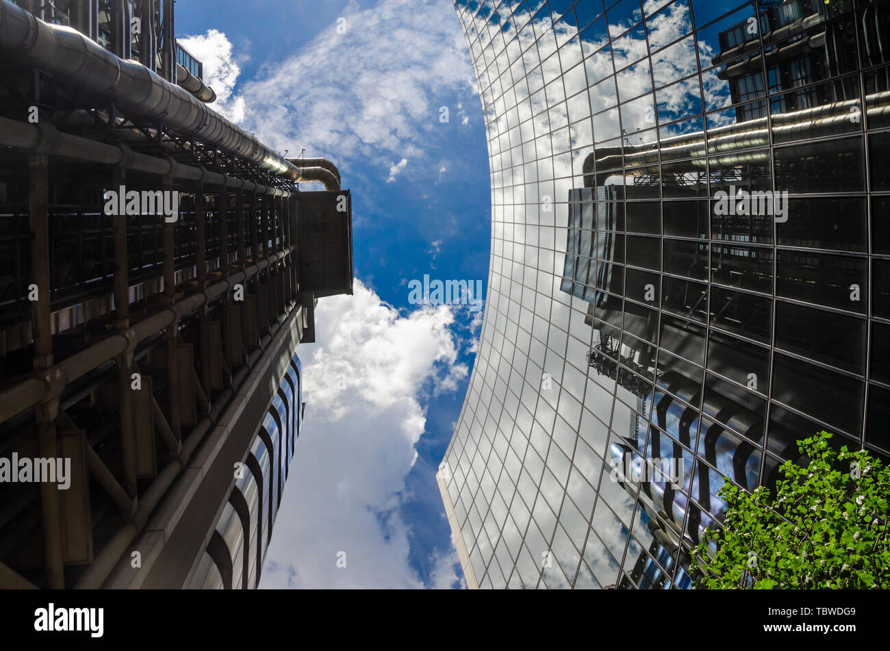 looking-up-at-the-willis-building-and-lloyds-of-london-building-in-the-financial-district-of-the-city-of-london-TBWDG9.jpg
