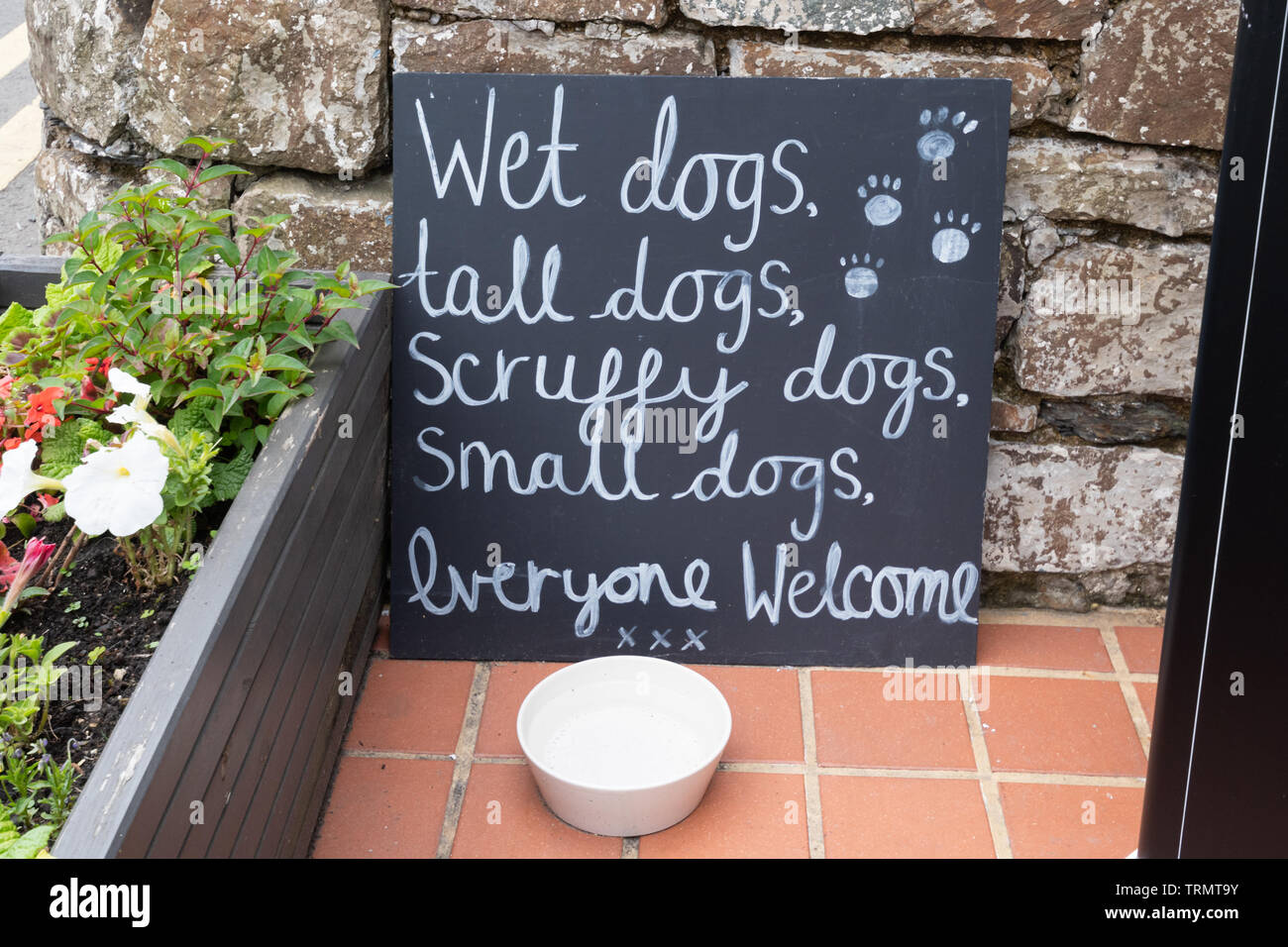 amusing-sign-outside-a-welsh-tearoom-wet-dogs-tall-dogs-scruffy-dogs-small-dogs-everyone-welcome-with-a-dog-water-bowl-TRMT9Y.jpg