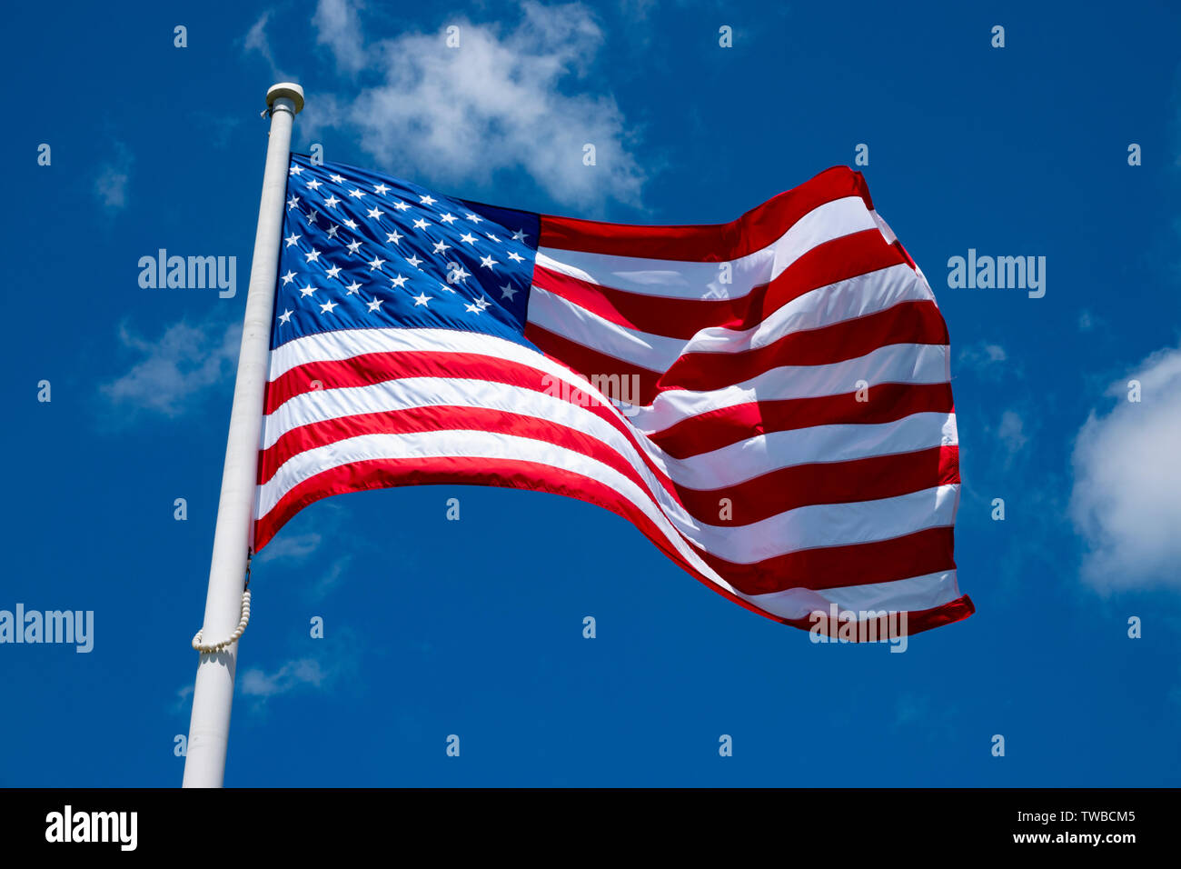 usa-united-states-national-flag-flying-on-a-flagpole-on-a-windy-day-TWBCM5.jpg