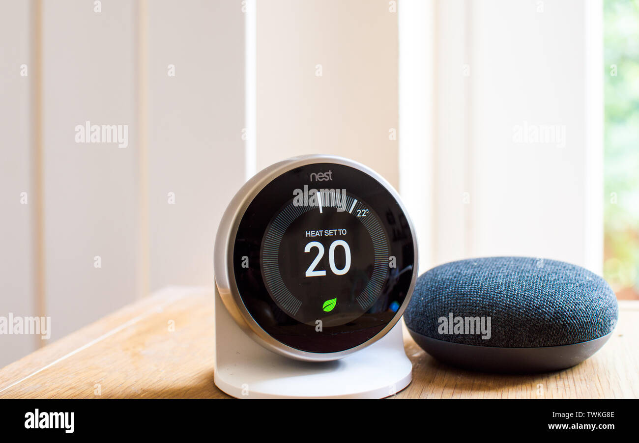 nest-thermostat-and-google-home-mini-TWKG8E.jpg