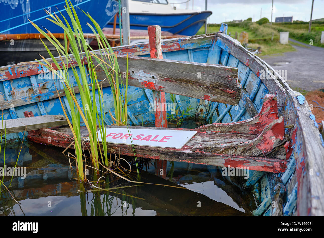 close-up-of-inside-bow-of-old-abandoned-wrecked-row-boat-filled-with-rain-water-with-weeds-growing-in-with-a-for-sale-sign-on-rotten-bench-W146CE.jpg