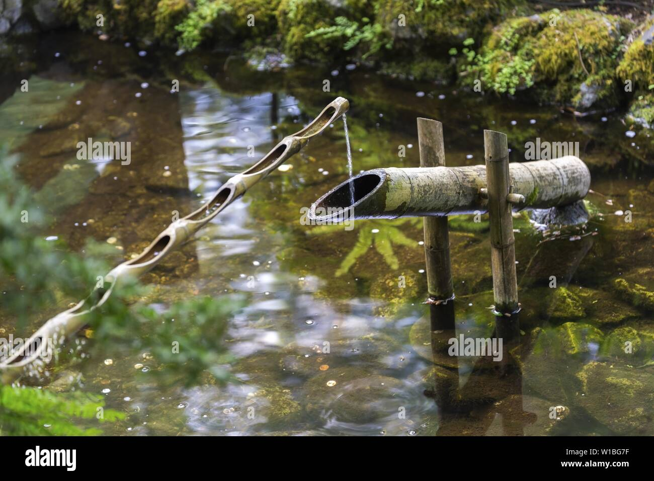 water-spilling-in-japanese-garden-pond-f