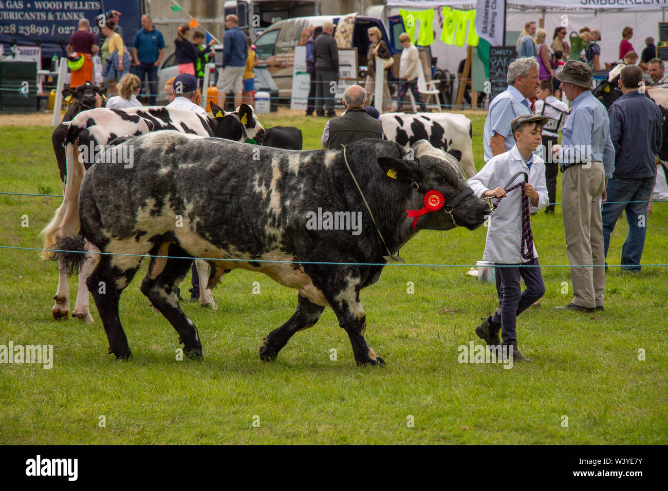 skibbereen-west-cork-ireland-18th-july-2019-the-sun-shone-on-the-carbery-show-today-allowing-the-community-to-show-off-their-animals-ride-their-horses-and-enjoy-the-fun-of-the-show-ground-credit-aphperspective-alamy-live-news-W3YE7Y.jpg