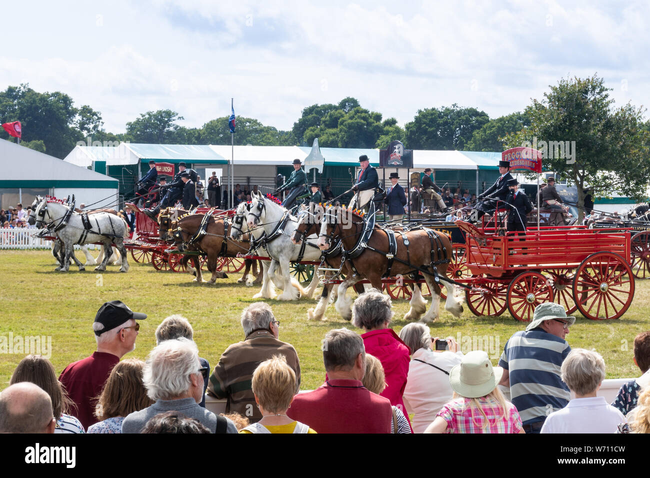 new-forest-and-hampshire-county-show-2019-the-heavy-horse-musical-parade-taking-place-in-the-main-arena-W711CW.jpg