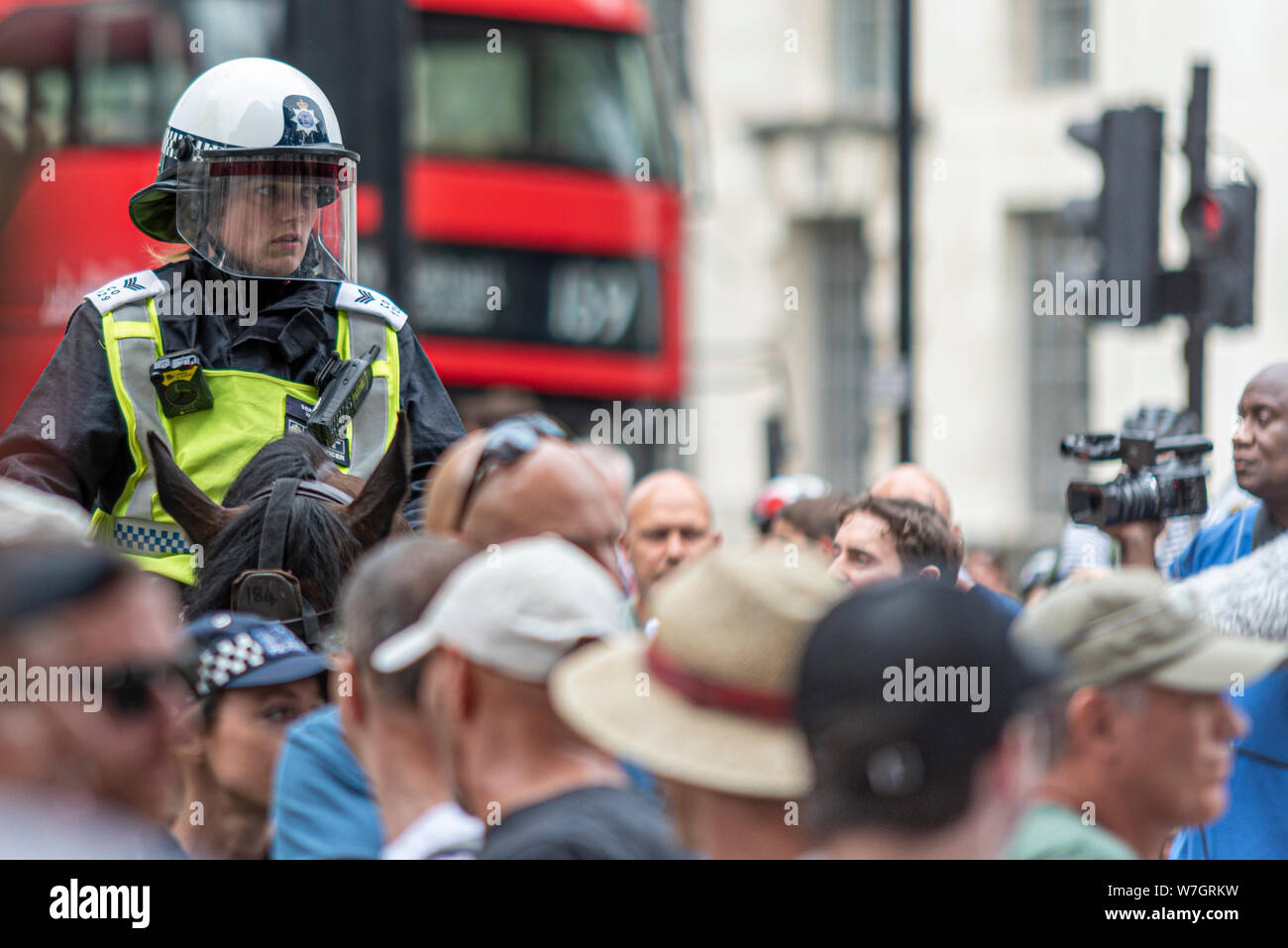 lone-female-police-sergeant-officer-on-horseback-looking-concerned-at-free-tommy-robinson-protest-rally-in-london-uk-mounted-police-horse-rider-W7GRKW.jpg