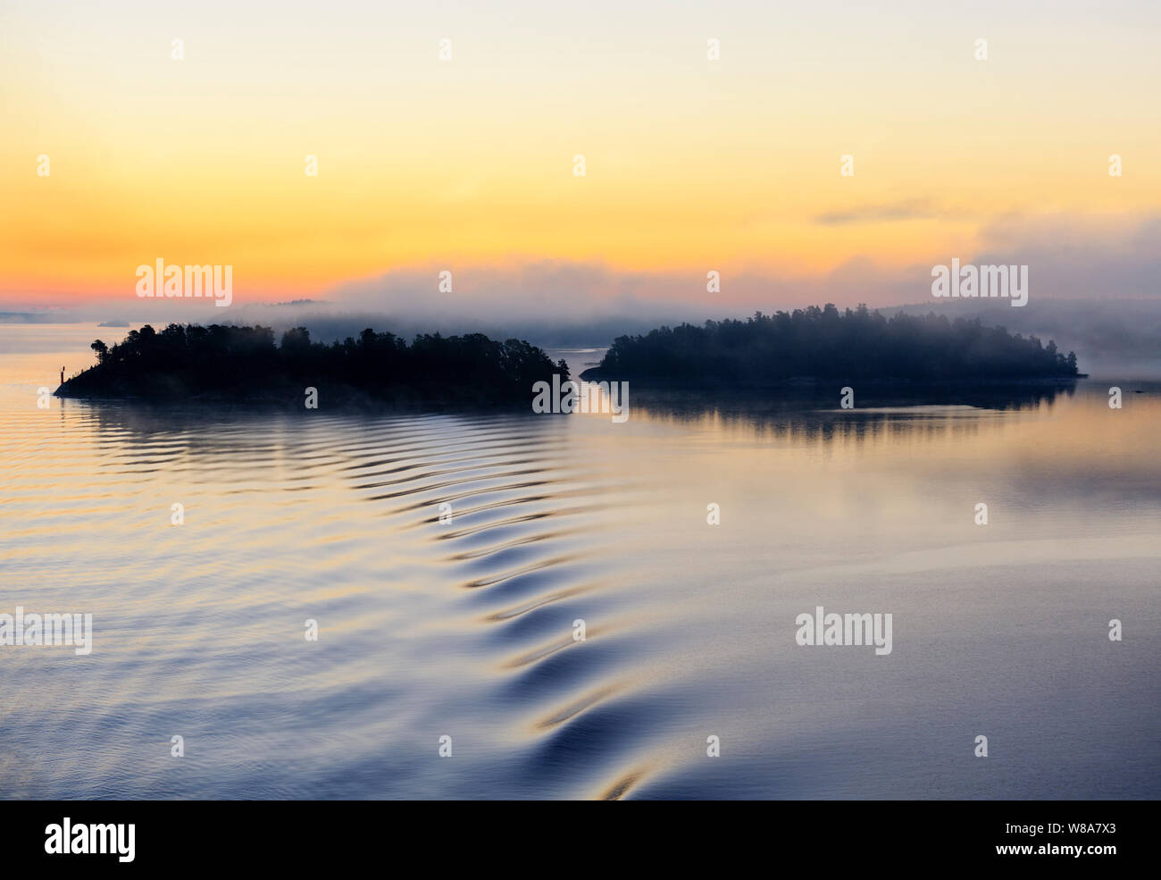 forested-islands-in-silhouette-in-the-stockholm-archipelago-along-the-swedish-coast-seen-from-the-baltic-sea-on-a-foggy-morning-beautiful-sunrise-W8A7X3.jpg