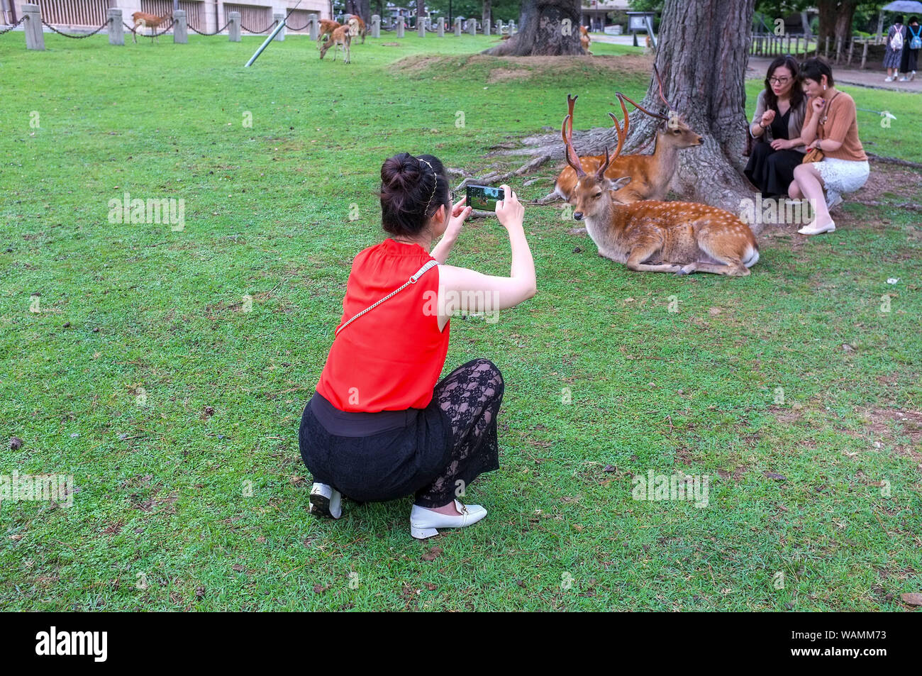 asian-tourists-taking-pictures-of-the-sa